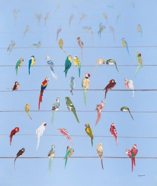 """Bild """"Papageien"""" by SABODesign"""