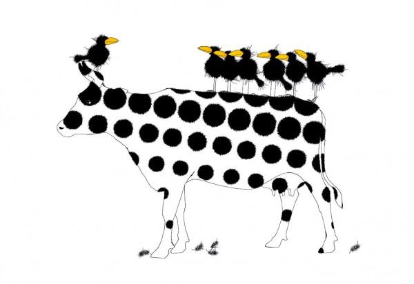 "Michael Ferner Kunstdrucke ""Cowbirds"""