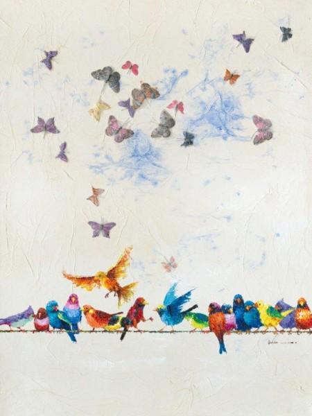 "Bild ""Vögel & Schmetterling"" by SABODesign"